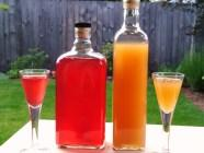 Rhubarb Gin and Rhubarb-Orange Gin 